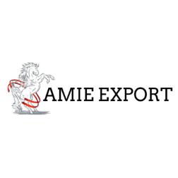 Amie export - Tulkot.lv atsauksmes